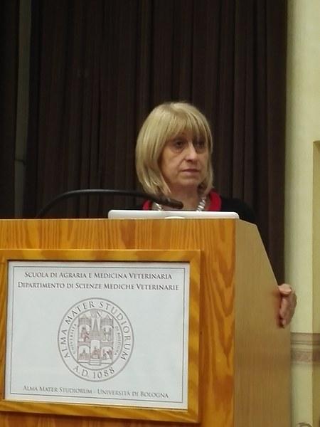 L'intervento dell'assessora regionale Palma Costi