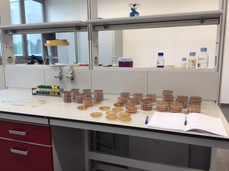 Particolare di un laboratorio