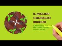 CIDEA, Università di Parma - POSITIVE: Protocolli Operativi Scalabili per l'agricoltura di precisione
